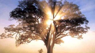 love spells using pictures, spiritual healing